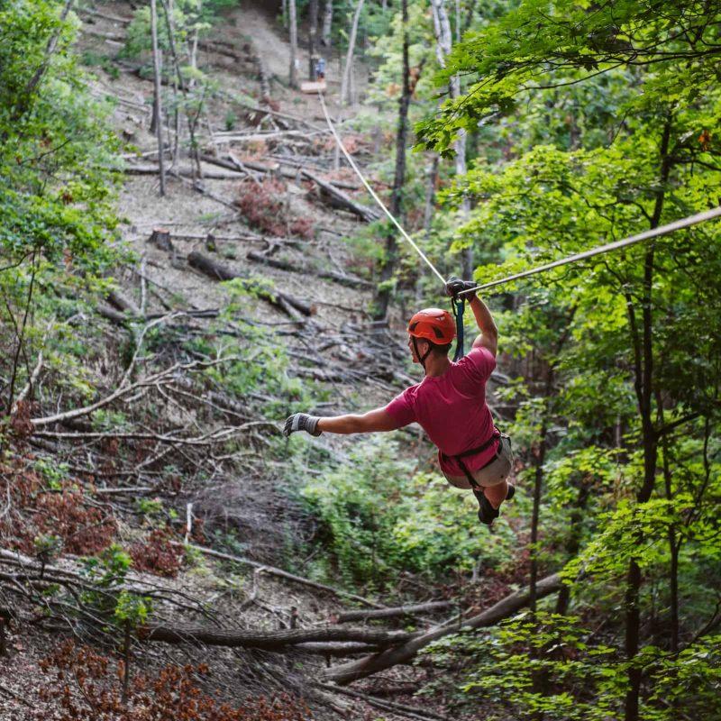 Man in orange helmet riding zipline through forest