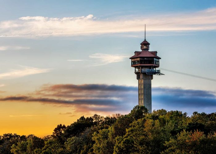 Watch tower in forest at sunset